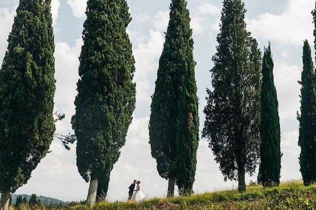 Spójrz z daleka na śliczną parę weselną, całującą się pomiędzy wysoką ita