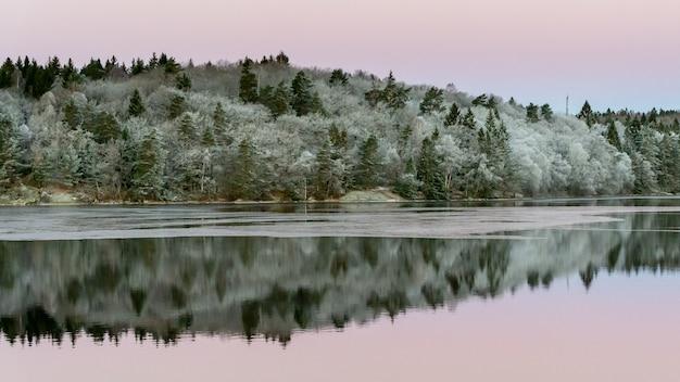 Spokojna woda i odbicia od drzew i nieba. piękny cichy poranek o wschodzie słońca.