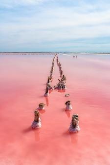 Spokojny, spokojny krajobraz różowego słonego jeziora z drewnianymi kijami pokrytymi solą na krymie