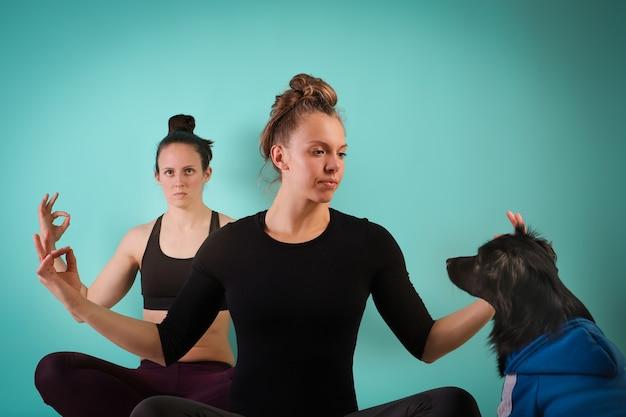 Sport z psem. dwie wysportowane dziewczyny ćwiczą, robi joga na niebieskim tle z psem. siła i motywacja, sport i zdrowy tryb życia, dbaj o kondycję. kobieca sprawność.