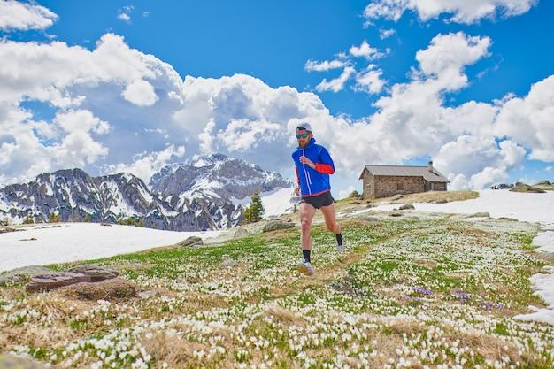 Sportowiec biegacz wśród kwiatów krokusów po rozpuszczeniu śniegu