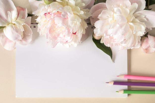 Sprężynowy notes i kredki, duże beżowe kwiaty i pąki piwonii na beżowym tle. widok z góry. skopiuj miejsce