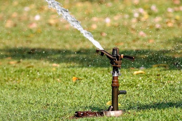 Springer robi podlewanie roślin i trawników w ogrodzie