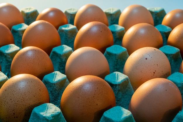 Sprzedaż jaj kurzych z wolnego wybiegu