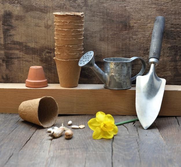 Sprzęt ogrodniczy układał na drewnianym tle z żółtym kwiatem daffodils