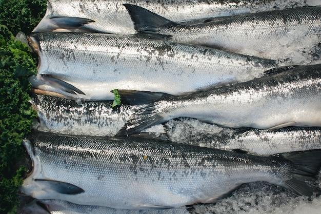 Srebrna ryba na sprzedaż na targu rybnym