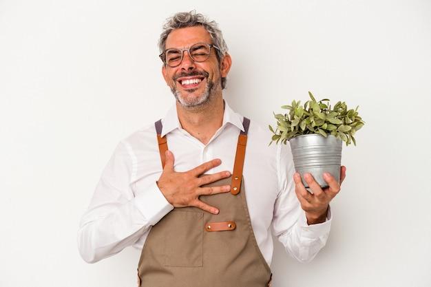 Średni wiek ogrodnik kaukaski mężczyzna trzyma roślinę na białym tle śmieje się głośno trzymając rękę na klatce piersiowej.