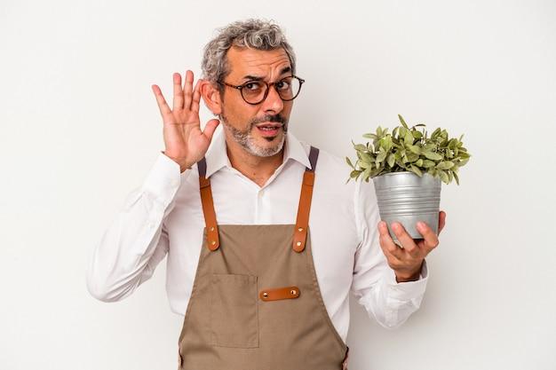 Średnim wieku ogrodnik kaukaski mężczyzna trzyma roślinę na białym tle próbuje słuchać plotek.