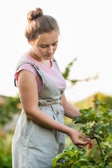 Średnio strzał dziewczyna zbierająca owoce