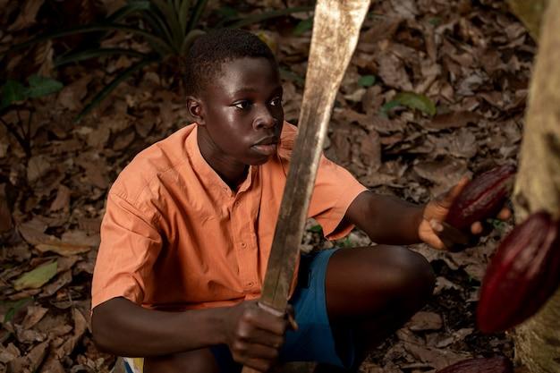Średnio strzałowy chłopiec zbierający ziarna kakaowe