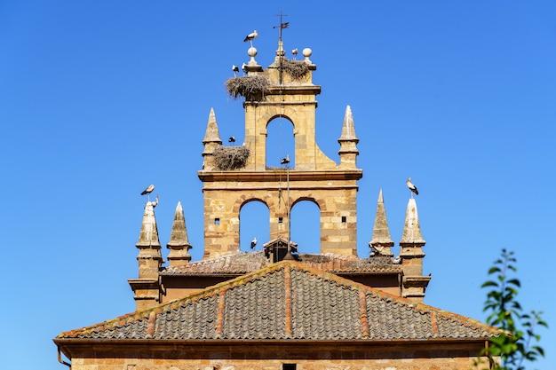 Średniowieczna wieża kościoła z wieloma bocianami i ich gniazdami na niebieskim tle nieba.