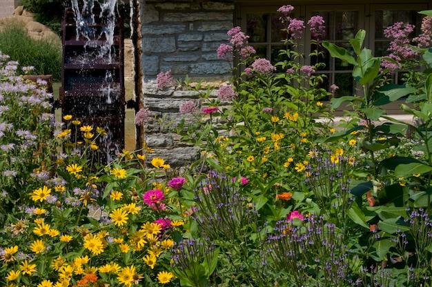 St. paul, minnesota. park como. piękne polne kwiaty z obrotowym kołem wodnym.