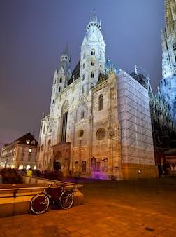 St stephen's cathedral w nocy. wiedeń