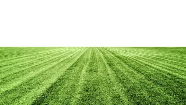 Stadion zielona trawa trawnik na białym tle, boisko do piłki nożnej, element projektu
