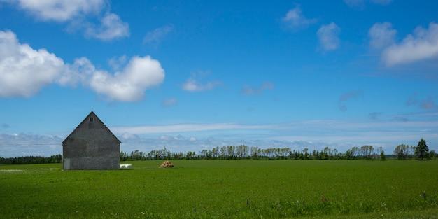Stajnia w zielonym trawiastym polu przy gospodarstwem rolnym, kensington, książe edward wyspa, kanada