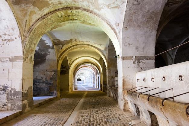 Stajnie w lochu opuszczonego zamku