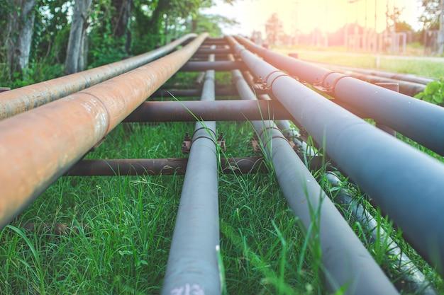 Stalowe długie rury w polach ryżowych wierconych na ropę naftową.