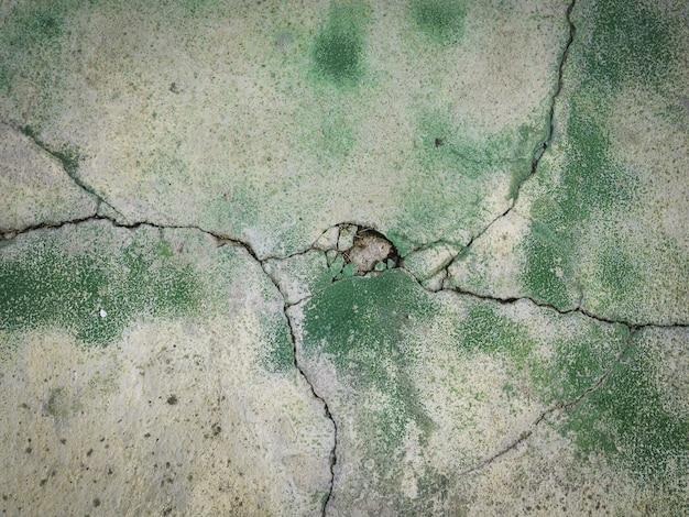 Stara biała cementowa ściana z zieloną kiści farbą na nim