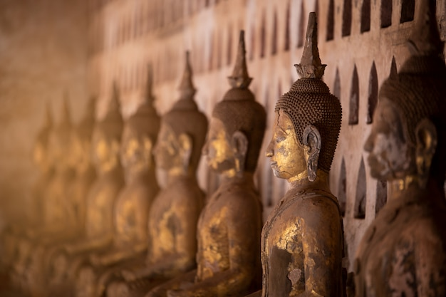 Stara buddha statua w wacie sisaket, laos