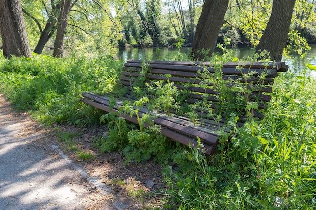 Stara drewniana ławka porośnięta trawiastymi chwastami i roślinnością w słoneczny wiosenny dzień w ekstremadura