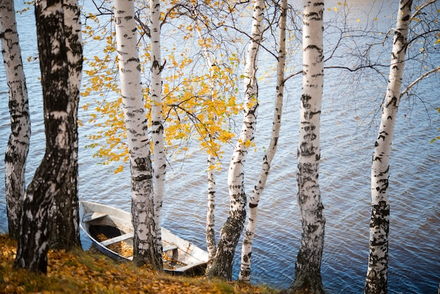 Stara drewniana łódź w jesień parku, drzewach, spadać liściach i stawie, jesień krajobraz