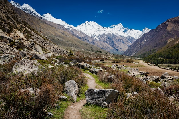 Stara droga handlowa do tybetu