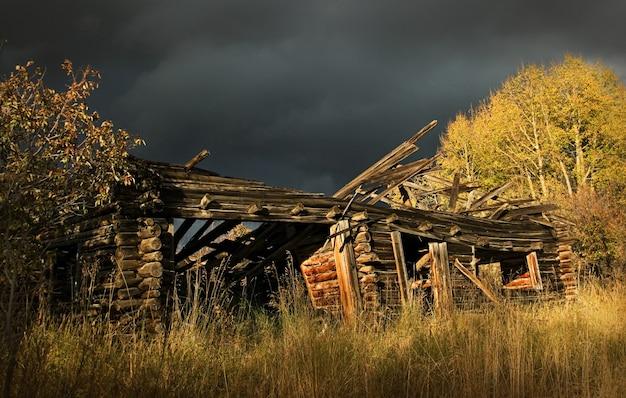 Stara kabina w kolorado lesie państwowym