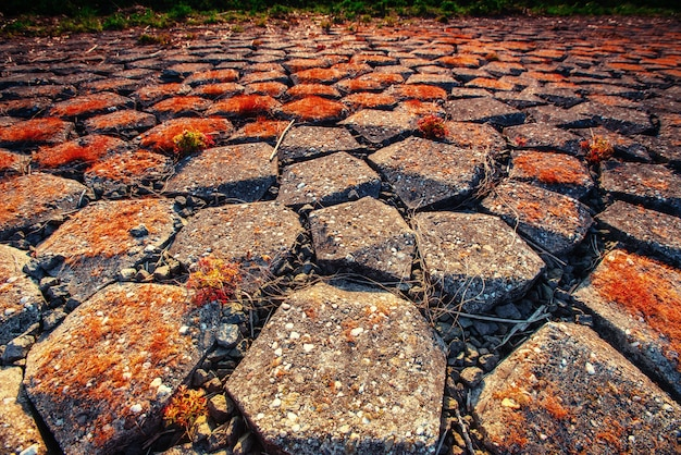 Stara kamienna droga. świat piękna karpaty. ukraina. europa