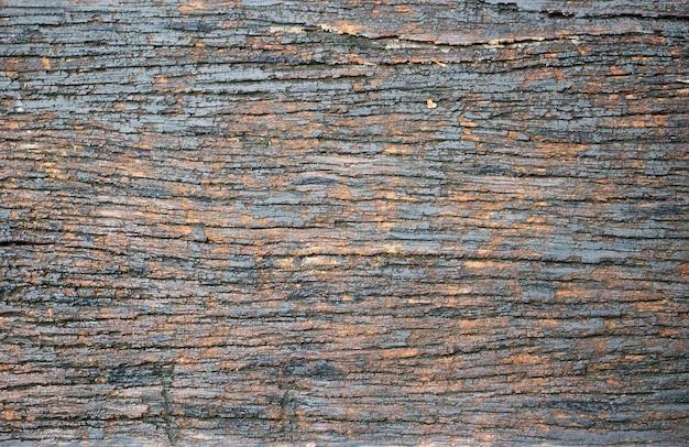 Stara mokra drewniana tekstura w dżungli dla tła.