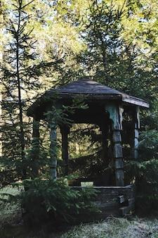 Stara opuszczona drewniana altana w lesie