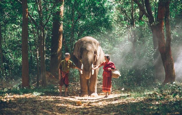 Stara para spaceru ze słoniem w dżungli, w tajlandii