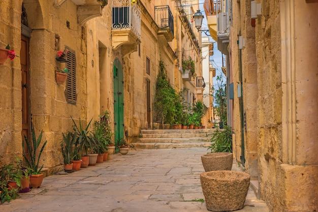 Stara wąska średniowieczna ulica z żółtymi budynkami i kwiatów garnkami w valletta, malta