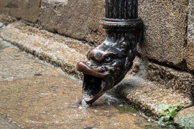 Stara żeliwna rynna deszczowa z zwierzęcą głową w deszczowy dzień.