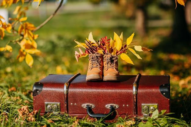 Stare brązowe buty na vintage walizce w lesie jesienią