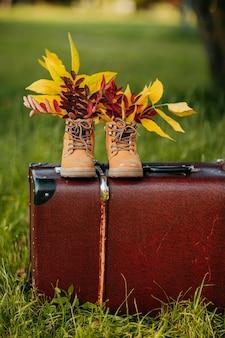 Stare brązowe buty z liśćmi wewnątrz na brązowej walizce vintage w jesiennym lesie