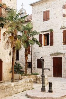 Stare budynki i egzotyczne palmy na starym mieście