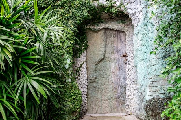 Stare drewniane drzwi w skale