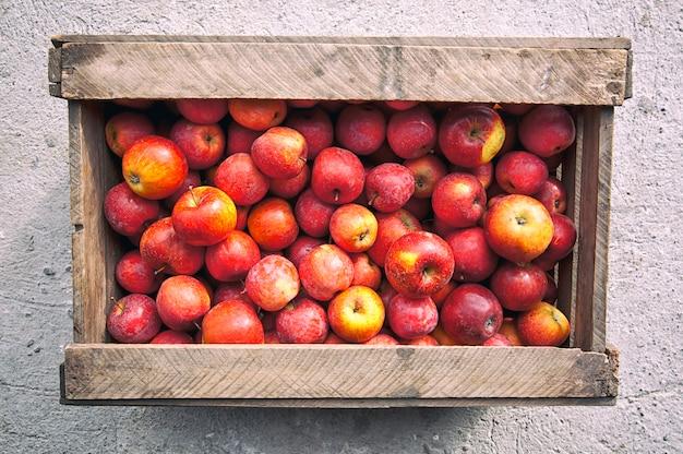 Stare drewniane pudełko z dużą ilością czerwonych soczystych jabłek w środku