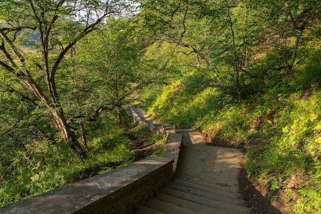 Stare kamienne schody w parku?