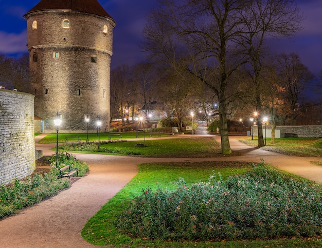 Stare miasto w tallinie w nocy