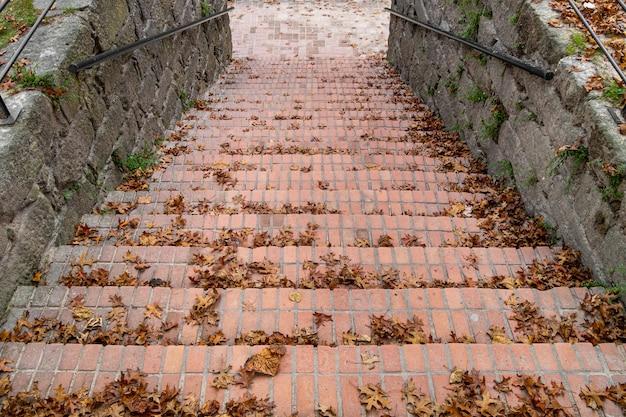 Stare schody na zewnątrz w parku pokryte jesiennymi liśćmi