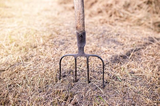 Stare widły w tle ziemi. narzędzia rolnicze.
