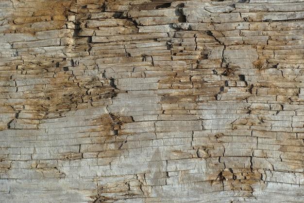 Stare znaki na drewnie