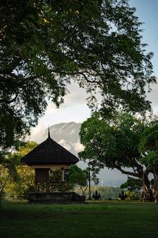 Starożytna konstrukcja architektoniczna z drzewami i górami na tle pień fotografia