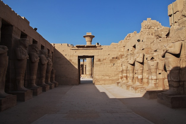 Starożytna świątynia karnak w luksorze