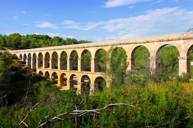 Starożytny rzymski akwedukt w lesie latem. tarragona,