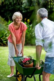 Starsza para z taczki i kwiatów garnkami w jardzie