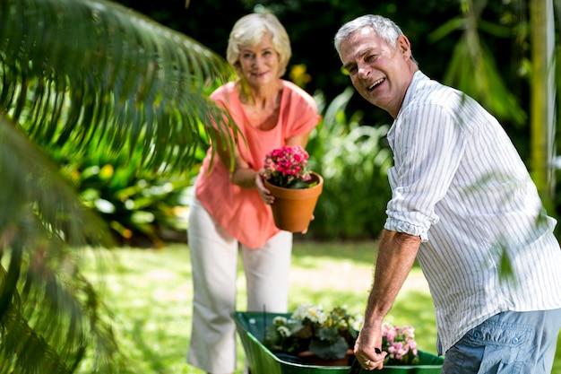 Starsza para z taczki i kwiatu garnkiem w jardzie