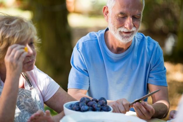 Starsze pary usuwa ziarna morelowe owoc w ogródzie