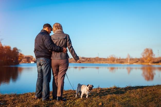 Starszej pary mopsa chodzący pies w jesień parku rzeką. szczęśliwy mężczyzna i kobieta cieszy się czas z zwierzęciem domowym.